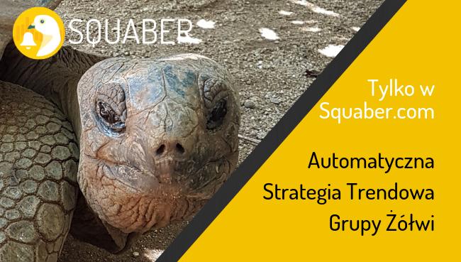 Strategia trendowa Grupy Żółwi w Squaber.com